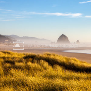 Beautiful Dune View of Cannon Beach, Oregon