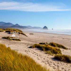 Sunny Day in Cannon Beach, Oregon