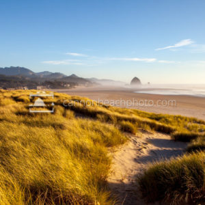 Sunny Dune View of Cannon Beach, Horizontal