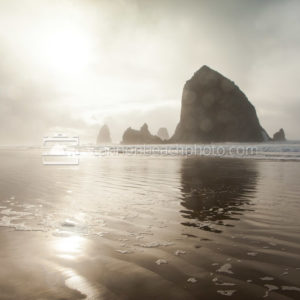 Foggy Light at Haystack Rock