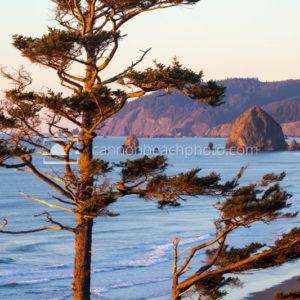 Gorgeous Oregon Coast View in Cannon Beach