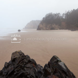 Rock Vista, Fog, Hug Point State Park, Oregon Coast