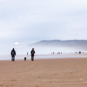 Beach Walk on a Misty Day
