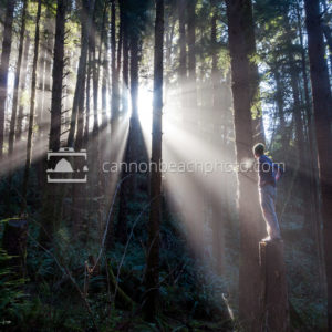 Man in the Forest Light