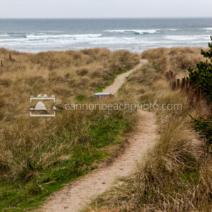 Beach Path, Chapman Point