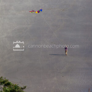Flying a Colorful Kite on the Beach