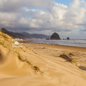 Golden Dune View of Cannon Beach