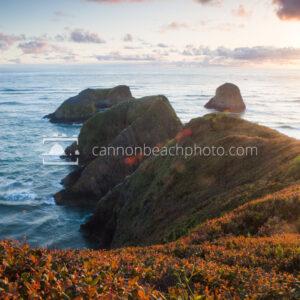 Murre Rocks Glowing Sunset