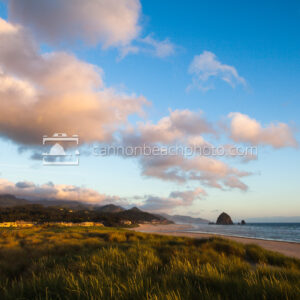 Cannon Beach Afternoon Light