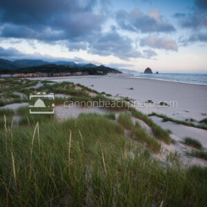 Cannon Beach Dune View, Evening Light