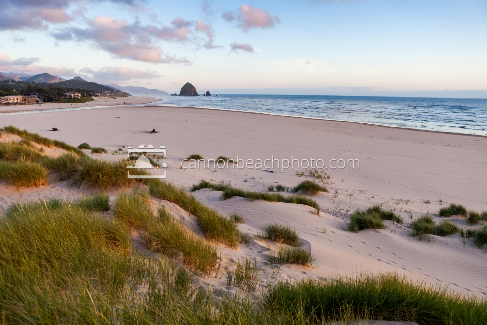 Purple Dunes, Cannon Beach Evening