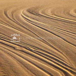 Sunlit Sand Texture