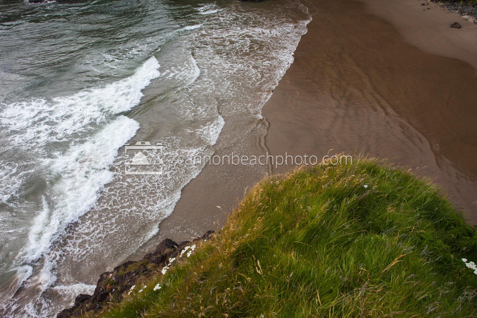 Grass Tuft and Ocean Below