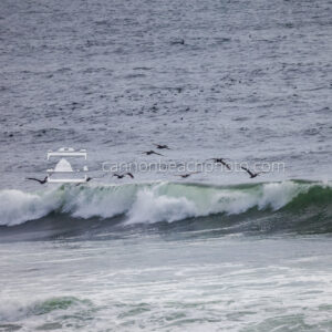 Pelicans Over Crashing Wave