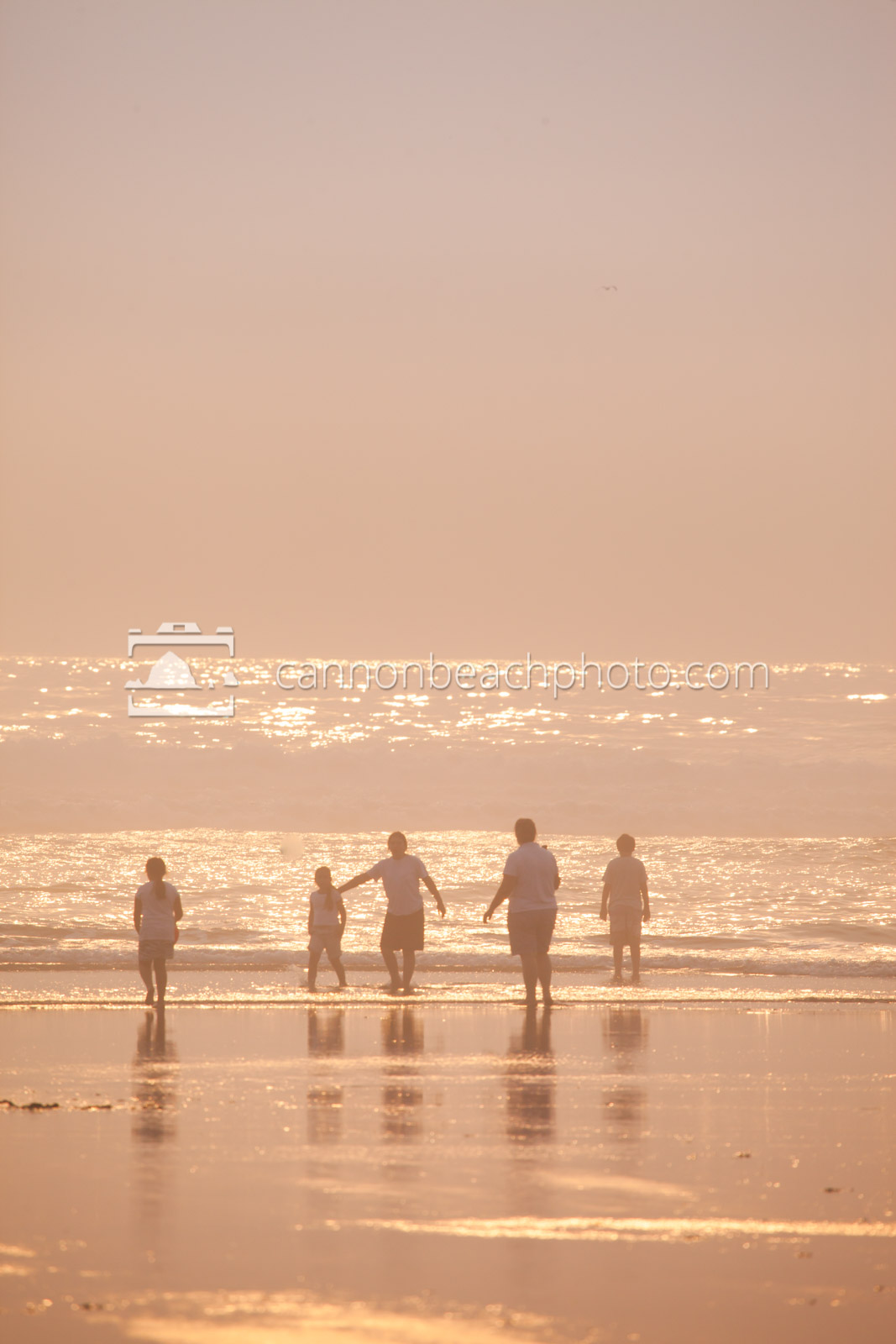 Family Playing at the Ocean on a Dreamy Day