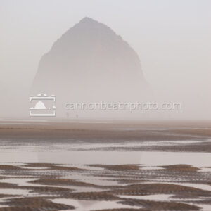 Dreamy Haystack Rock thru the Fog, Vertical