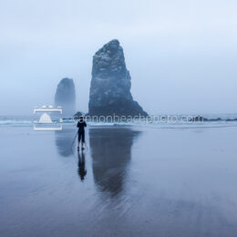 Photographing the Needles in the Fog, Horizontal