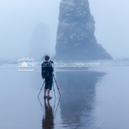 Photographing the Needles in the Fog, Vertical