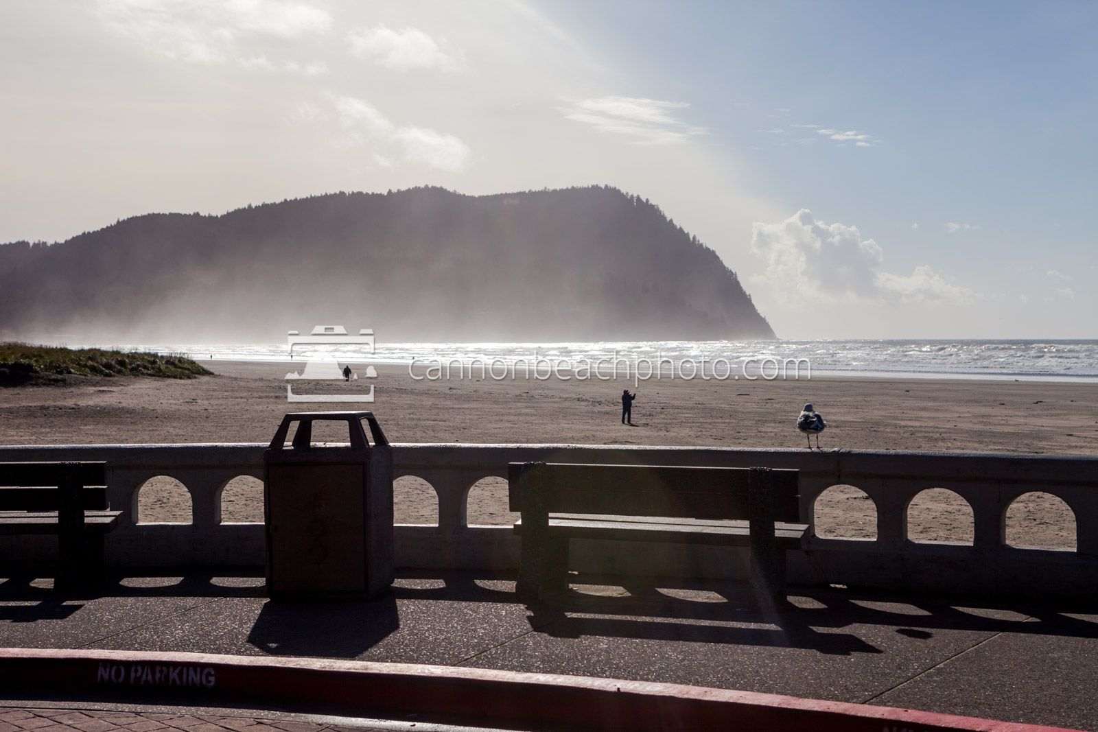 Seaside Turnaround View of Tillamook Head 2