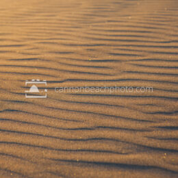 Sunlit Sparkly Sand Texture