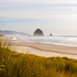 Vertical Dunes View, Haystack Rock