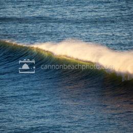 Oregon Wave Curl