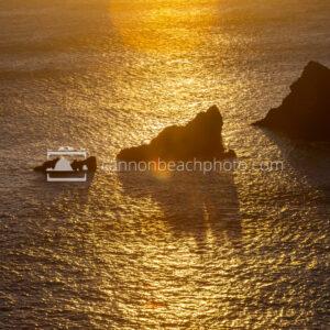 Sea Lion Rocks in Golden Sunlight