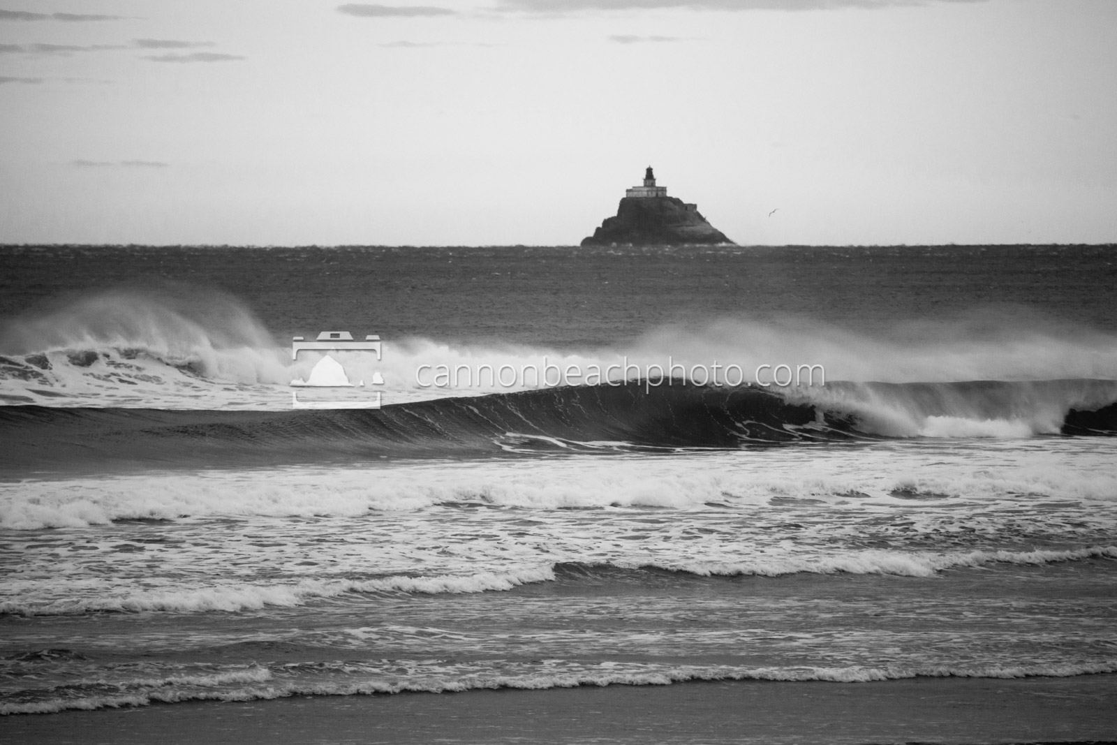 Tillamook Lighthouse and Wave Curl