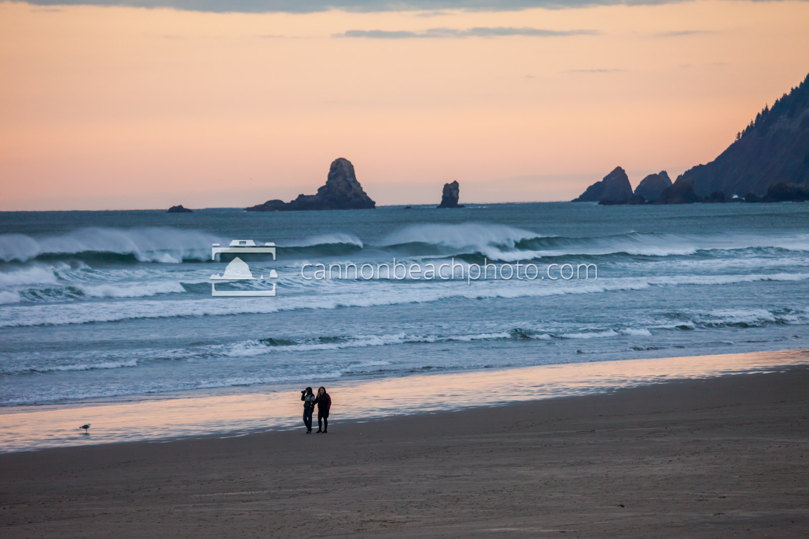 Two Walking on a Windswept Beach 2
