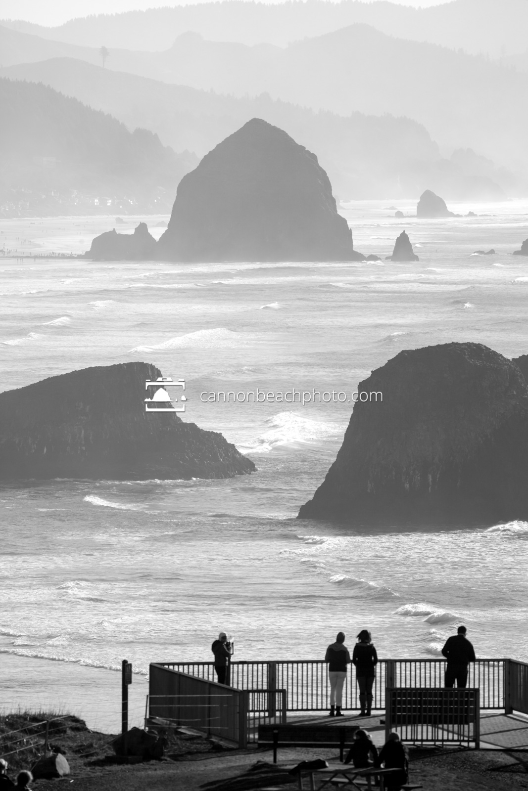 Ecola State Park Viewpoint in Black and White