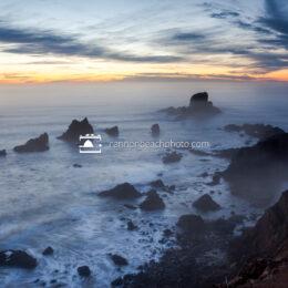 Foggy Sea Lion Rocks at Sunset