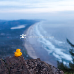 Neahkahnie Mountain Viewpoint with a Rubber Ducky